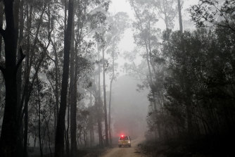 The logging industry has faced a double blow from the bushfires.