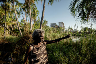 One Mile Dam sits on prime real estate on the edge of Darwin's CBD.