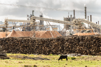 A shortfall in timber supply has the potential to threaten the future of the Opal plant near Morwell.