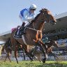 Farnan to run in The Everest for Aquis and miss Golden Rose