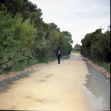 A photograph of Woolcoot Road, Wellard where Steven Daventhoran walked into shrub land and saw Jane's body.