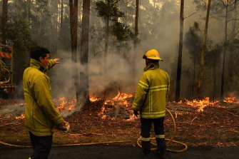 Firefighters contain a blaze on Sunday beside the Princes Highway between Nowra and Batemans Bay on NSW's South Coast.