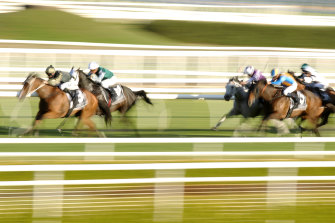 Snitz wins last year's Takeover Target Stakes at Randwick.