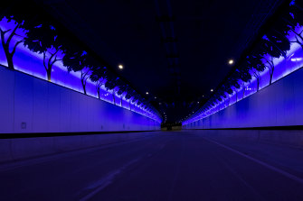 Lighting displays featuring native birds and trees are dispersed throughout the tunnel.