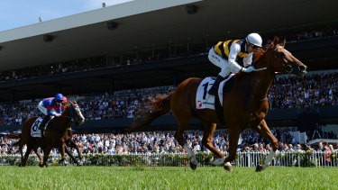Daylight second: Galio Chop, ridden by Mark Zahra, streaks away in the Ranvet Stakes.