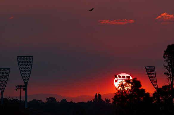 Grounds for concern: Manuka Oval, a sporting ghost town