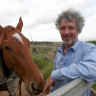Warrnambool's Weir divide: horses, beaches and the damage done