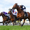 Orderofthegarter takes the honours, Caulfield Cup next on agenda