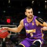 Sydney Kings, Cairns Taipans lead MVP nominations