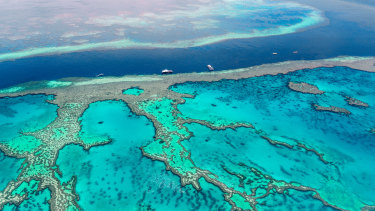 Senior members of the federal government are at odds over their support for state laws that require farmers to reduce water pollution for the Barrier Reef.