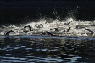 Swimmers compete during the men's marathon swimming event in Tokyo on Thursday.