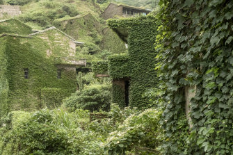 Vines wrap the buildings of Houtouwan Village which was abandoned in the 1990s.