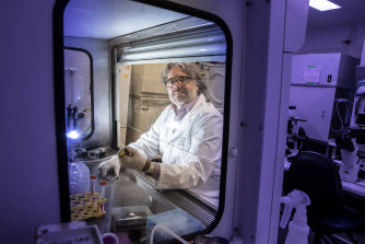 Professor Jose Polo from Monash University led the development of non-natural embryos for research.