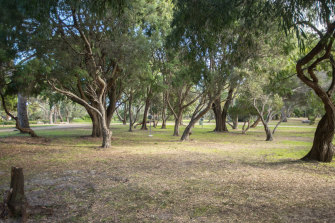 There had been hopes that the Rosebud camping ground - which has been closed for much of the year - would open up in time for Christmas.