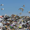 Glorious rubbish, have we been wasting your energy all along?