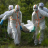 WHO investigates Ebola cover-up claims in Tanzania