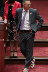 Walking the walk: Senator Di Natalie as Greens leader in the lead-up to the marriage equality plebiscite.