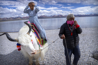 A Chinese tourist prepares to pose for a photo atop a white yak being led by a Tibetan man in Namtso.