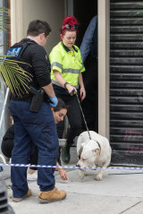 Police removed dogs from property on Lalor Street, Port Melbourne, during Wednesday morning's raids.