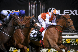 Melbourne Cup winner Vow And Declare passes the finish post.