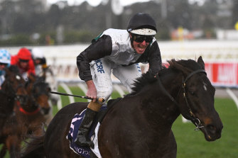 So Si Bon is a leading chance in Saturday's group 1 Rupert Clarke Stakes.