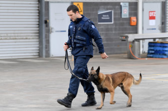 Officer Jessie Reid with Bronco the Belgian Shepherd at Victoria's 24-hour emergency rapid-response base at the Metropolitan Remand Centre in Ravenhall.