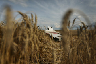 Part of the MH17 wing lays in a field near the village of Grabovka in the self proclaimed Donetsk Republic, Ukraine.