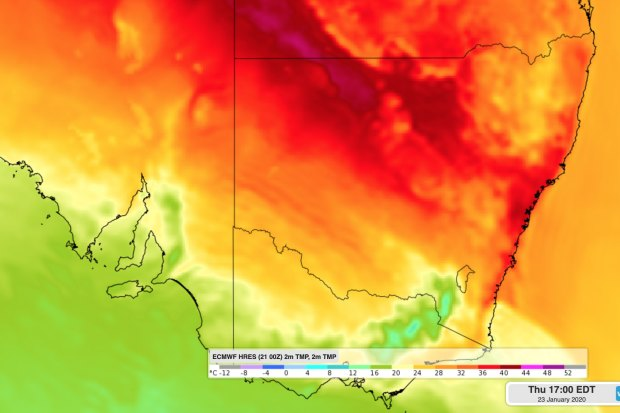Sydney forecast to hit 40 degrees as NSW bushfire danger returns
