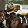 Race-by-race tips and preview for Hawkesbury on Sunday