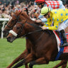 2011 Melbourne Cup winner Dunaden dies in paddock accident