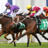 Waller's smart stayers set for more summer showdowns