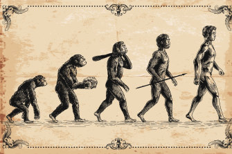 Home sapiens, the modern man carries the genes of multiple ancient human species.