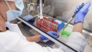 Pfizer and BioNTech's successful production of a COVID-19 vaccine prompts market euphoria.