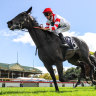 New trainer sets Caulfield Stakes target for Miss Siska