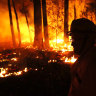 We, the media, must take some of the blame as Australia burns