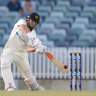 Bancroft out cheaply, Marsh in form in Sheffield Shield