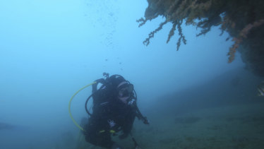 A member of the dive team.