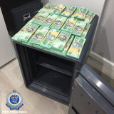 Cash seized during raids on Assure Protection Services.