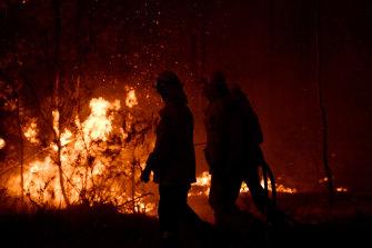 Aturan penebangan diubah setelah kebakaran hutan Black Summer.