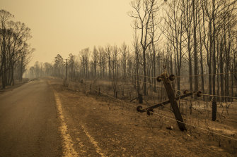 Bushland destroyed by the Currowan Fire to the west of the Kangaroo Valley.