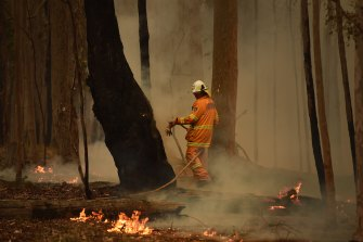 The NSW Rural Fire Service said almost 2500 homes were destroyed last season.