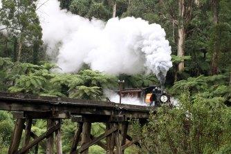 The Puffing Billy tourist train steams through the Dandenongs.