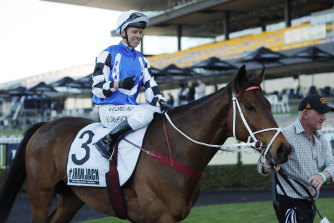 Mugatoo can break a run of outs in the hometown Newcastle Cup for trainer Kris Lees and Australian Bloodstock.