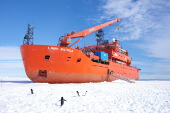 Headed for the ship-breaking yards? Aurora Australis will likely be broken up unless an effort to turn it into a museum succeeds.