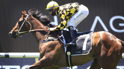 Remarque may be the best Golden Slipper pointer from pivotal weekend