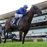 All Star favourite: Happy Clapper wins last year's Doncaster Mile