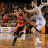 Brisbane Bullets dealt NBL finals blow by Taipans