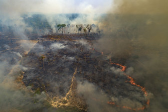 """Large swathes of the Amazon rainforest have burnt in recent years, often due to farming and land-clearing. Scientists fear too much fire in the """"lungs of the planet"""" could trigger a tipping point of irreversible landscape change from jungle to savannah."""