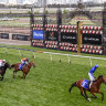 Boss ready for Bivouac's explosive turn of foot in Canterbury Stakes
