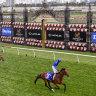 Australian horse races overlooked in world's top 20